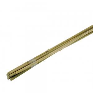 Bamboestok 120 cm - 10 stuks