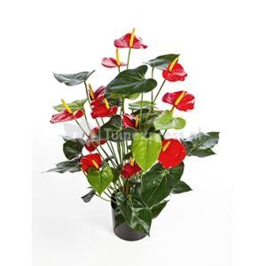 Kunstplant Anthurium red