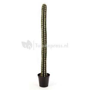 Kunstplant Cactus straight L