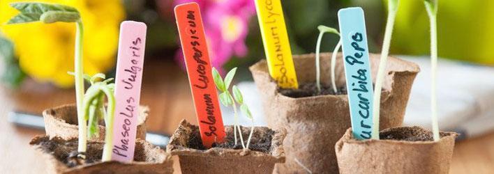 Moestuin - Plantenlabels
