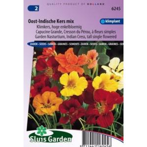 Hoge enkelbloemige klimkers bloemzaden – Oost-Indische kers mix