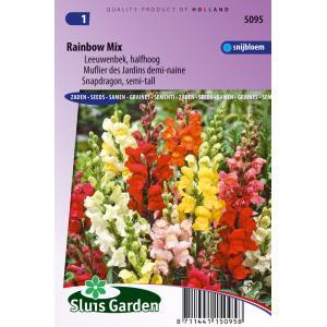 Leeuwenbek halfhoog bloemzaden - Rainbow Mix