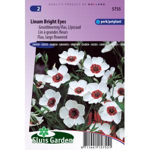 Lijnzaad bloemzaden – Linum bright eyes