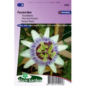 Passiebloem bloemzaden – Passion Blue