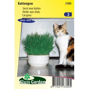 Kattengras zaden
