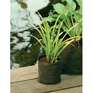 Waterplantzak rond 15 cm